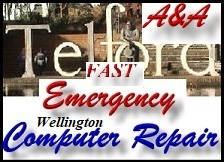 Wellington same day emergency computer repair
