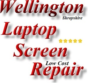 Wellington Broken Laptop Screen Repair